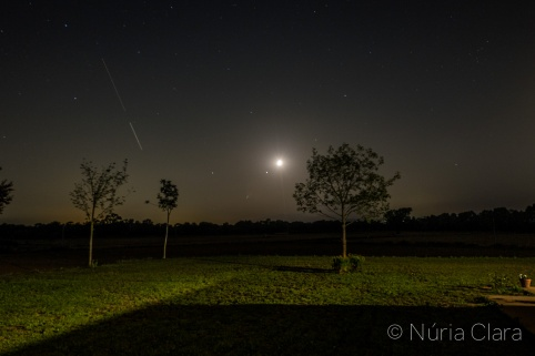 Nuria-170728-22754